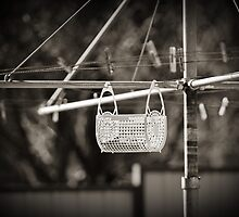 Washing Line Portrait by sallydexter