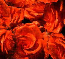 RED ROSES. by Vitta