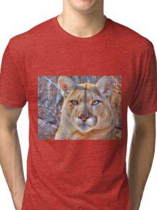 Cougar Tri-blend T-Shirt