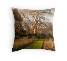 Giant Oak Bathed in Winter Afternoon Light Throw Pillow