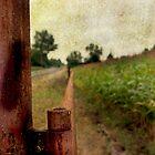 Down The Road A Bit by Rebecca Cozart