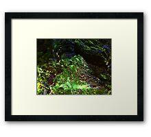 The Hidden Land - The Valley Framed Print