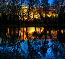 Beddington Park Pond by Dean Messenger