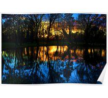 Beddington Park Pond Poster