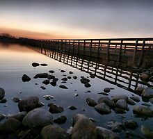 Fleetwood Nature Reserve . by Lilian Marshall