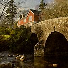 Dartmeet by Lisa Williams