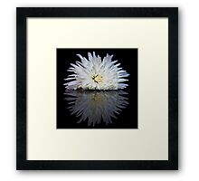Mums the Word! Framed Print