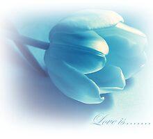 Love Is........... by Aj Finan