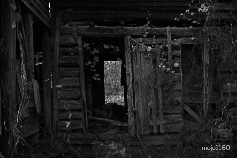 The Dark Side of Orange County II by mojo1160