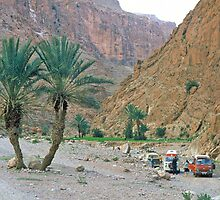 Campsite in the Todra Gorge by David Davies