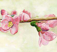 Pink Dogwood by Yvonne Carter
