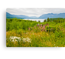 Lake Quinault Wildflowers Canvas Print