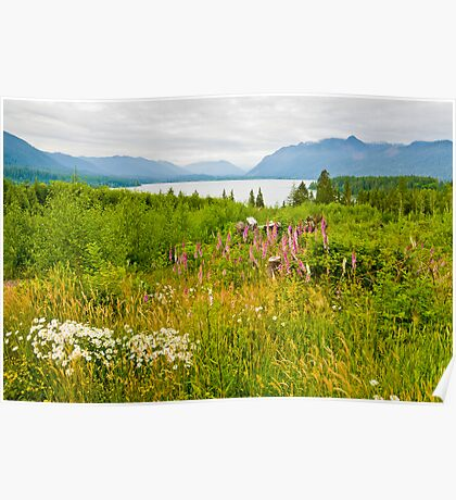 Lake Quinault Wildflowers Poster