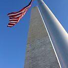 Washington Monument by Samantha Jones