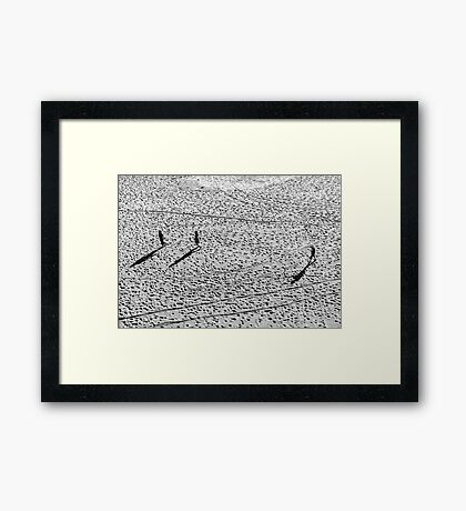 People Walking on the Beach Framed Print