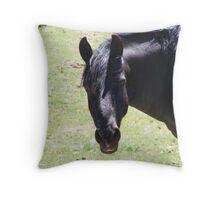 Majestic Navajo Mustang Throw Pillow