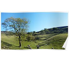 Littondale Another Aspect Poster