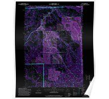 USGS Topo Map Oregon Dale 279550 1995 24000 Inverted Poster
