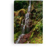 Hestercombe Waterfalls HDR Canvas Print