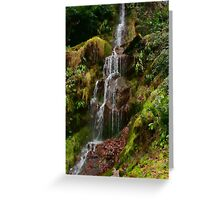 Hestercombe Waterfalls HDR Greeting Card
