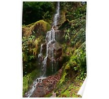 Hestercombe Waterfalls HDR Poster