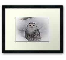 Owl Be Yours Forever Framed Print