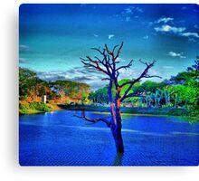 Dead tree in lake Canvas Print