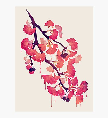 O Ginkgo Photographic Print