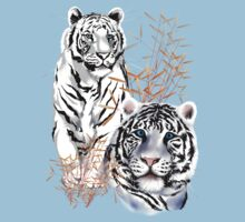 White Tigers  by Lotacats