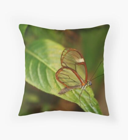 Glasswing Butterfly (Costa Rican) Throw Pillow