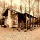 Country Comfort by Dawn di Donato