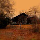 Grandpas House by Dawn di Donato
