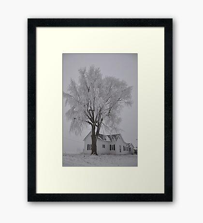 Frozen Sentry Framed Print