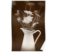 sepia blooms Poster