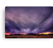Oh Oh Canvas Print