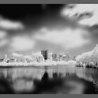 Manhattan 2013 Collection by infiniteartfoto