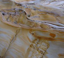 Patterns in coastal sandstone, Bare Island, Sydney. by orkology