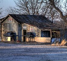 The Old Country Garage by Terence Russell