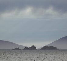 Approaching Carcass Island in The Falklands by Carole-Anne