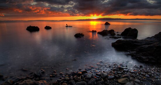 Coromandel Magic by Michael Treloar