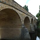 Richmond Bridge by DEB CAMERON