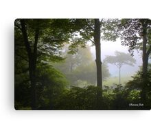 Foggy September Morning Canvas Print