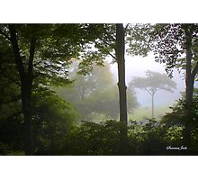 Foggy September Morning Photographic Print