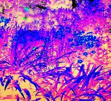 Wild Wood by Rachel Williams