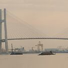 Saigon Harbour Saigon River Ho CHi Minh CIty by Andrew Bodycoat