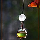 GlassMarbles by RosiLorz