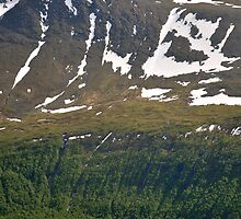 Hurtigruten, Malangen by itchingink