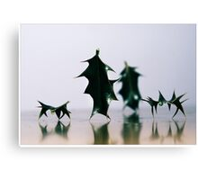 Holly walking the dogs Canvas Print
