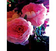 The Flower of Mudan Photographic Print