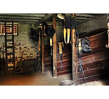 The Stable Photographic Print
